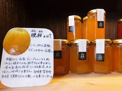 140127恵那銀の森⑨、晩柑ジャム (コピー).JPG
