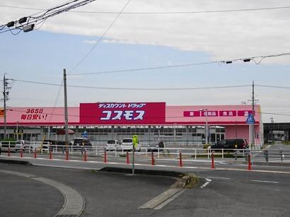 160527コスモス安八店② (コピー).JPG